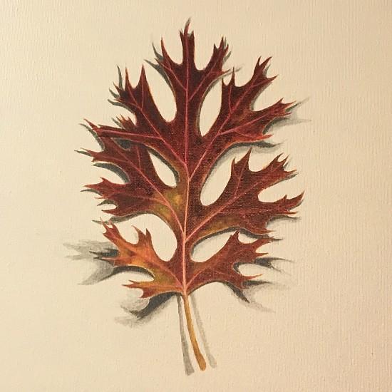 Alan Atkinson, OAKLEAF, OKLAHOMA STATE CAPITOL, 11-16 Acrylic on Canvas