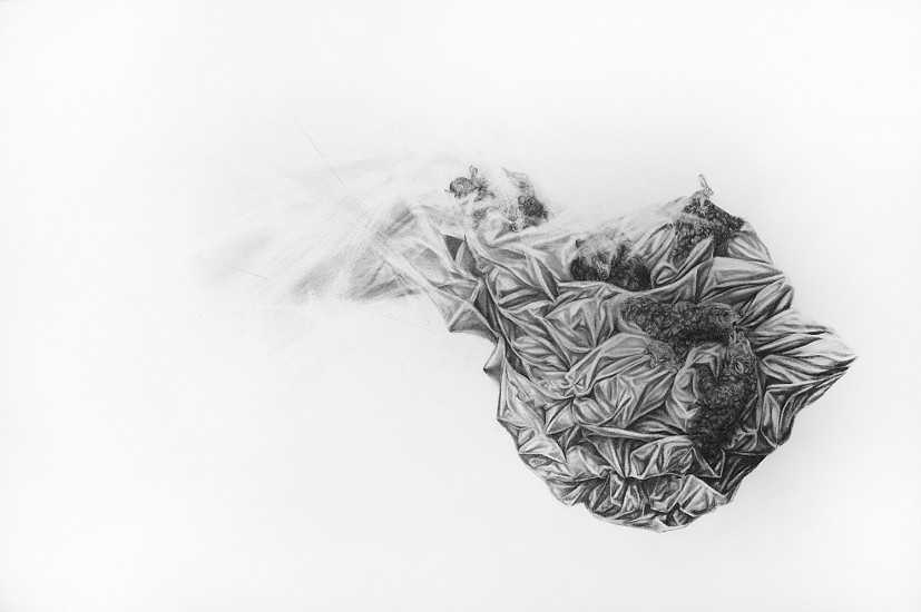 Haley Prestifilippo, ALMOST Graphite on Paper